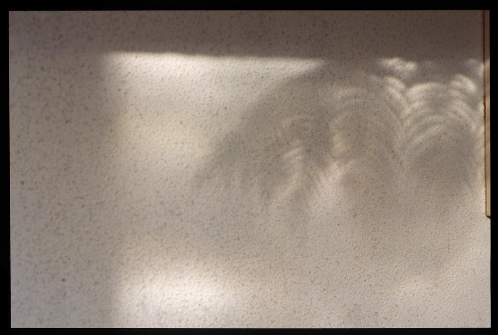 https://bn.dgcr.com/archives/2011/11/24/images/01